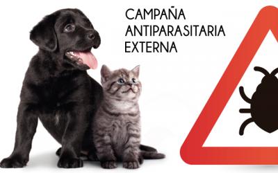 Campaña Desparasitación Externa 2019