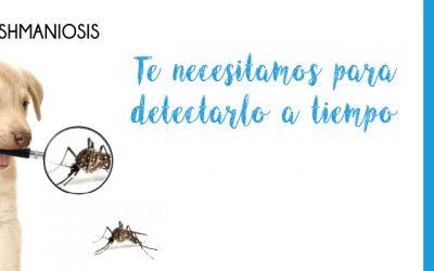 Campaña de Detección Precoz de la Leishmaniosis 2020-2021