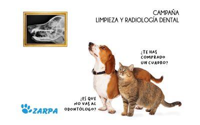 Campaña de Odontología Veterinaria 2021